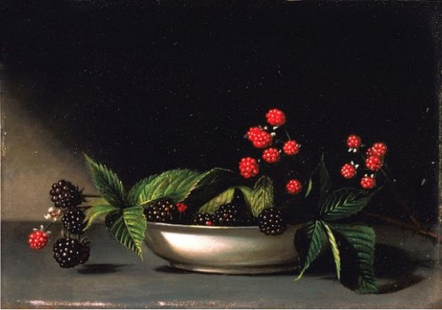 peale_blackberries-500x351