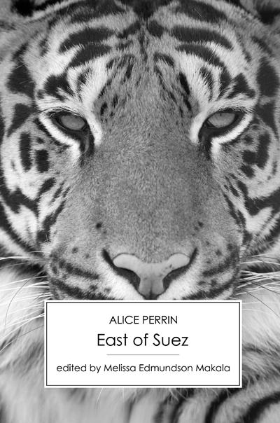 suez-large